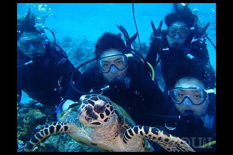 慶良間諸島で体験ダイビング2ダイブ+シュ...の写真