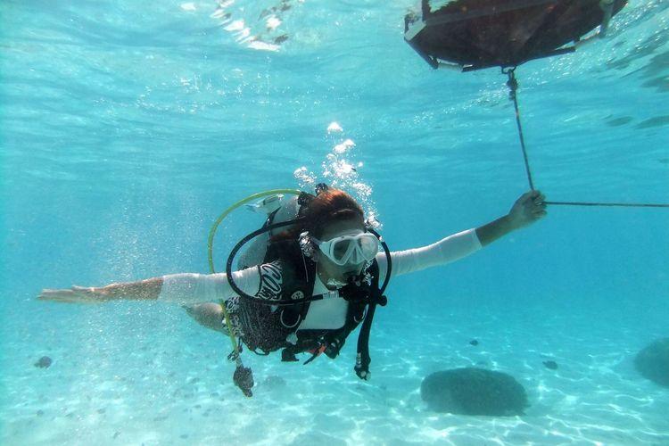 体験ダイビング + マリンアクティビティ...の写真