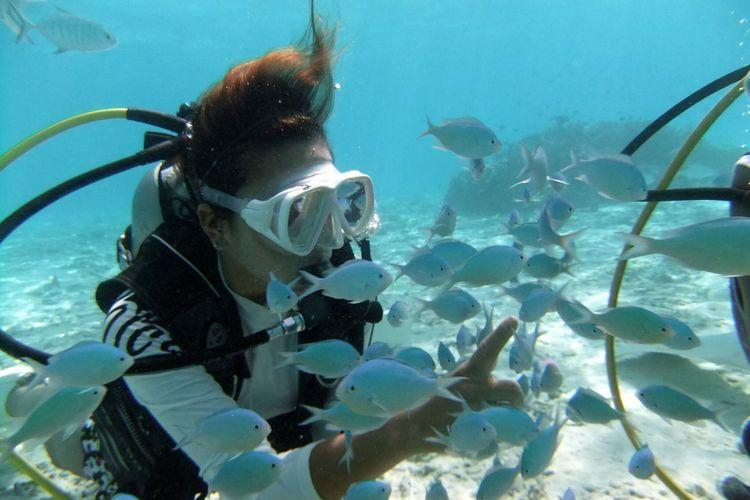 オプショナルツアー「スキューバダイバーコース (1日)」の写真
