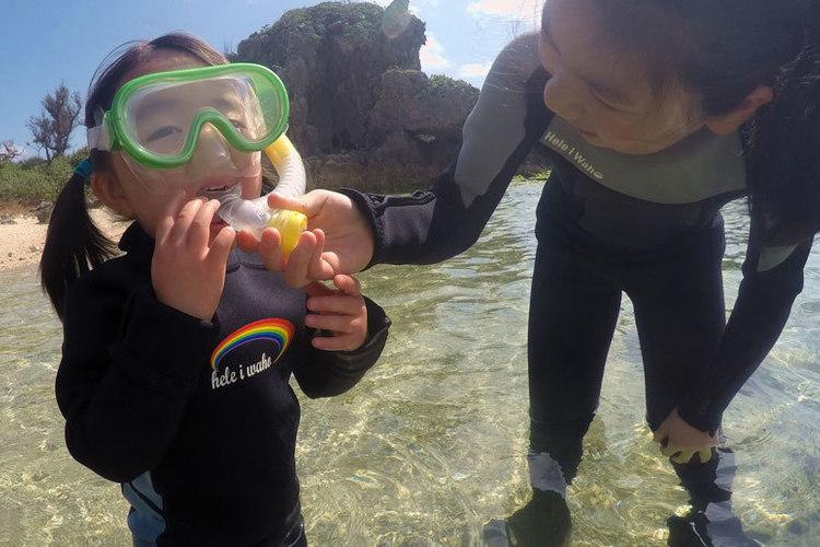 沖縄の海をピクニック + シュノーケル体...の写真