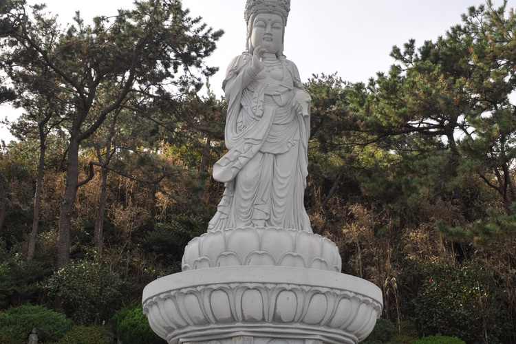 釜山グルメ 機張 海東龍宮寺 ・蓮花里ポ...の写真
