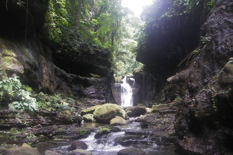 温泉ツアー ヒドゥンバレー観光の写真