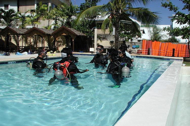 初めてでも安心!体験ダイビングの写真