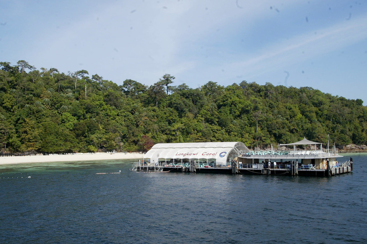 コーラルガーデンパヤ島の写真