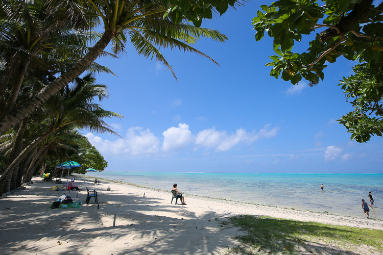 ココス島 半日コース 短時間でココスを思...の写真