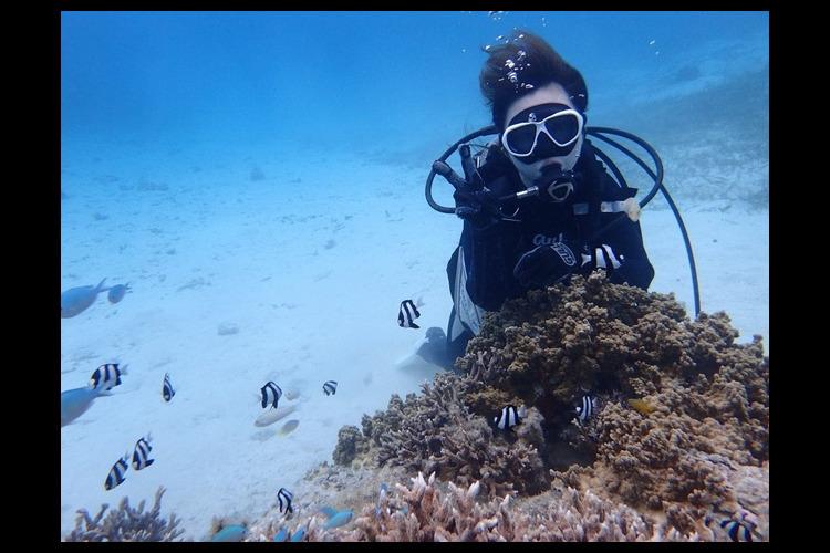 初心者にオススメ! 宮古島の海でビーチ体...の写真