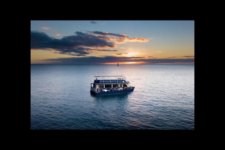 [最大80人で船を貸切] 豪華クルーズで...の写真