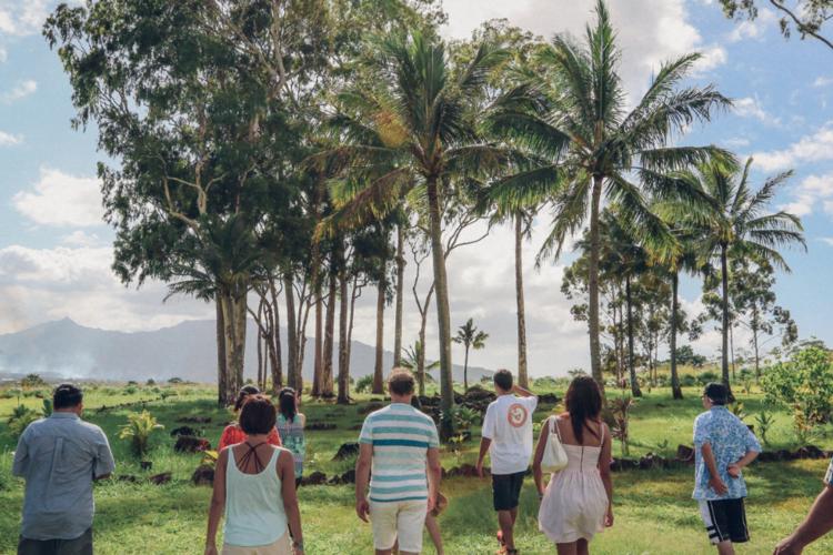 アイランド & ユー! ハワイを「見て、...の写真