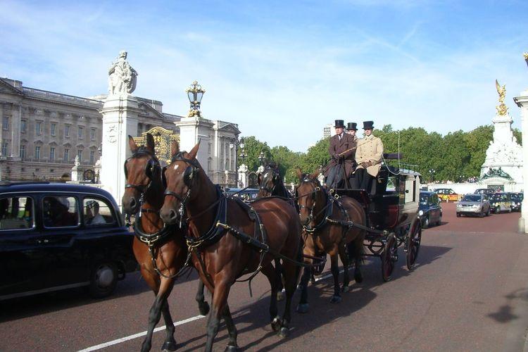 興味に合わせてロンドン半日観光 ロンドン...の写真