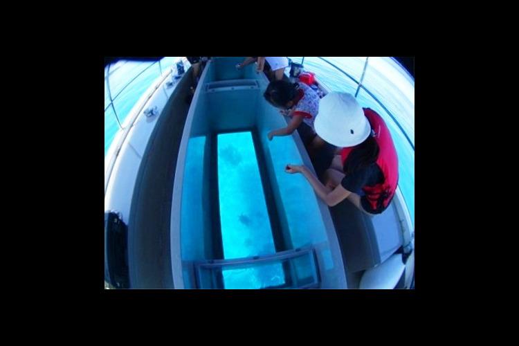 青の洞窟 + 神秘の洞窟群グラスボート海...の写真