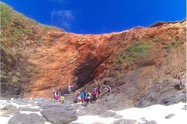 やんばる国立公園に指定された沖縄本島北部...の写真