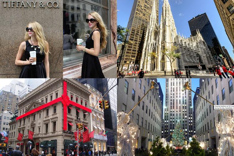 ニューヨーク一日観光完全版 [2021/...の写真