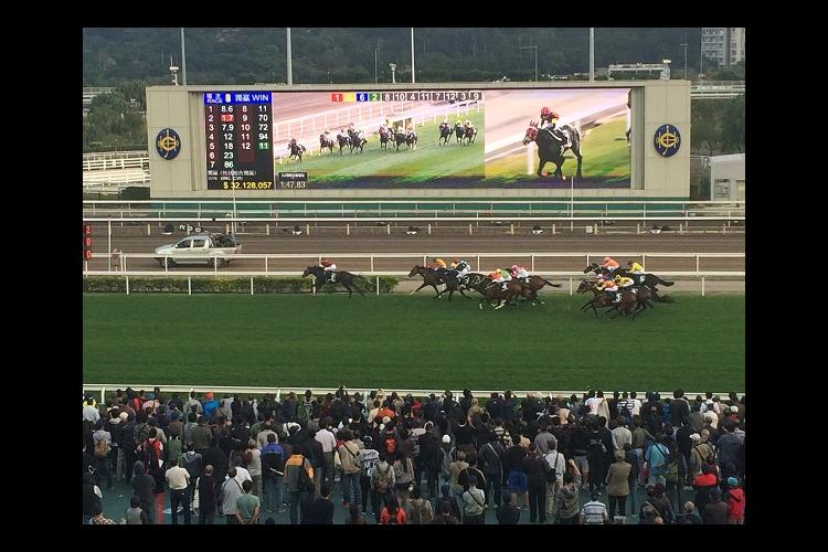 香港LONGINES国際競馬の写真