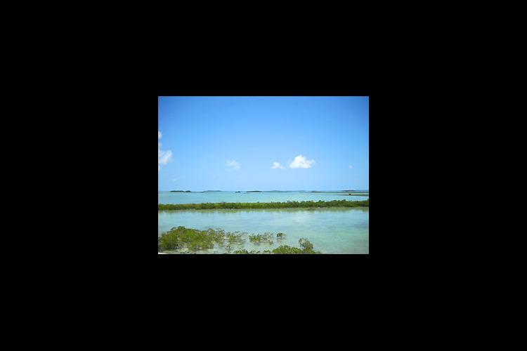 アメリカ最南端の楽園キーウエストと絶景セ...の写真