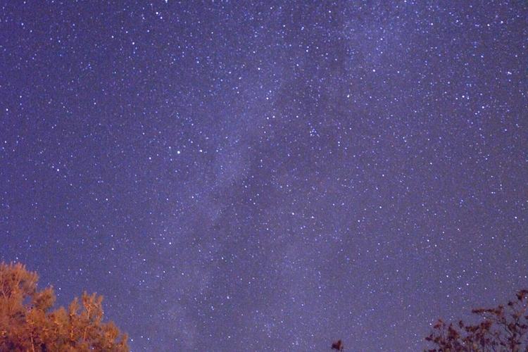 【1日6名様限定】広い宇宙からの癒し セ...の写真