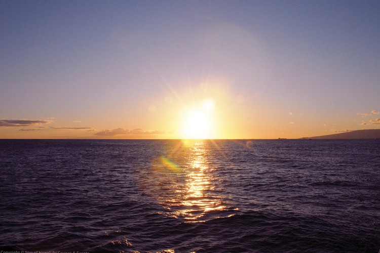 豪華客船 スターオブホノルル号で楽しむ ...の写真