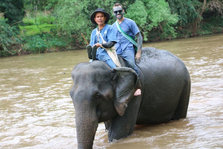 象使い体験1泊2日ツアー (日本語ガイド...の写真
