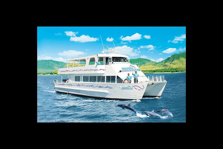 ハワイの海でイルカを見よう ドルフィンウ...の写真