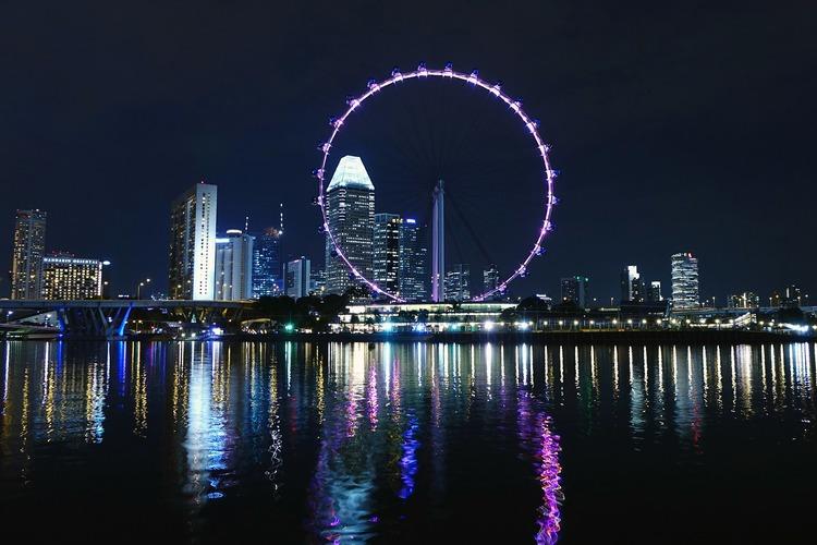 [最安値]シンガポール・フライヤー 夜景...の写真
