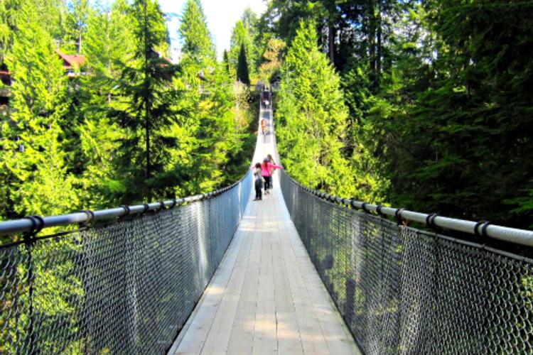 ゴンドラと吊橋が楽しい♪ ノースバンクー...の写真