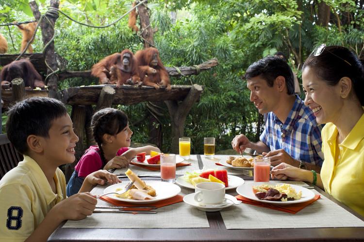 シンガポール動物園(アニマルショー&トラ...の写真