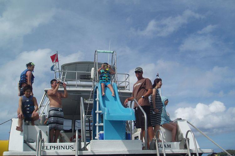 イルカウォッチング + オーシャンパーク...の写真