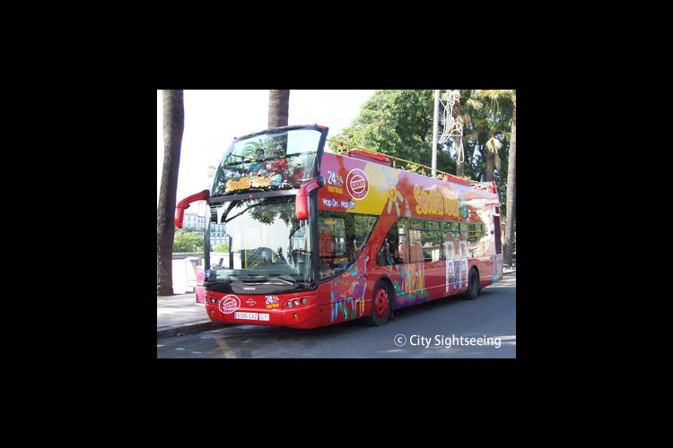 乗降自由バス1日券(セビリヤ市内)の写真