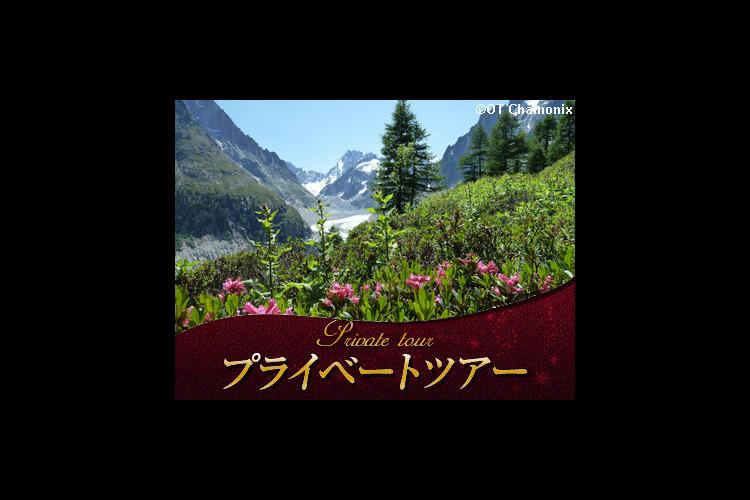 【プライベートツアー】 日本語ガイドと専...の写真