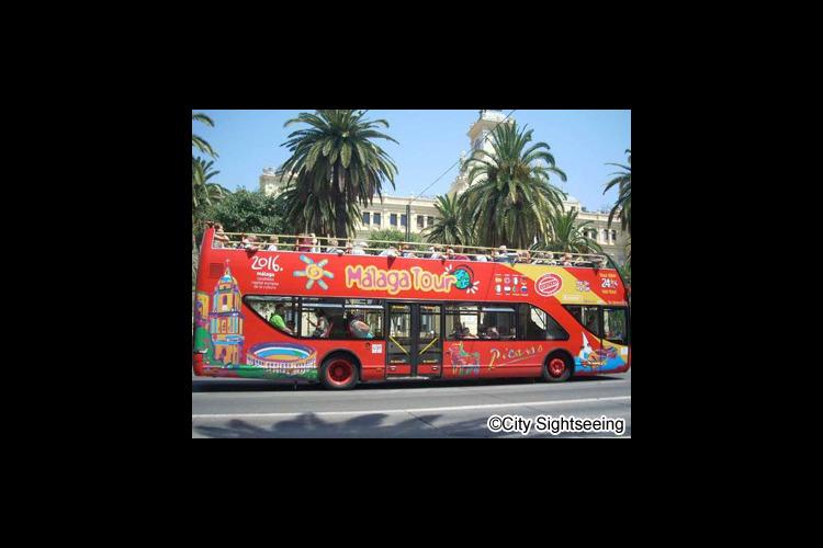 乗降自由バス1日券(マラガ市内)の写真