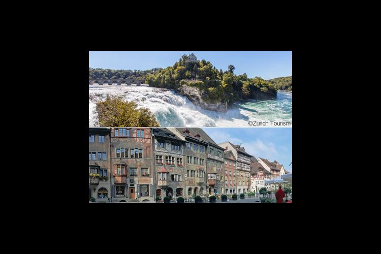 ラインの滝とシュタイン・アム・ライン半日...の写真