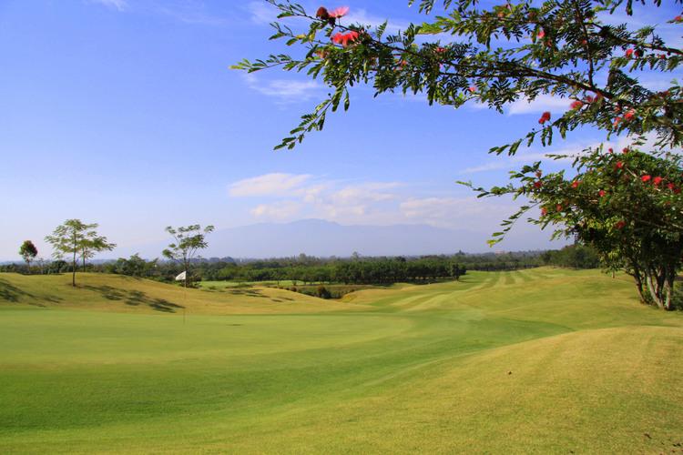 メージョーゴルフクラブ &リゾートの写真