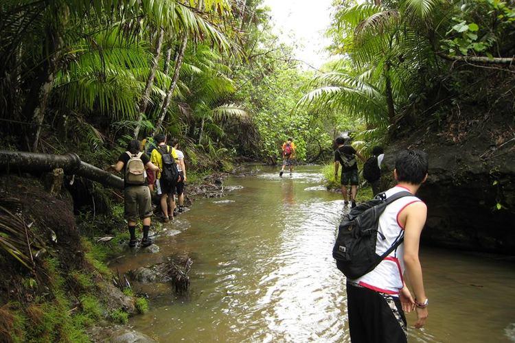キッズもシニアも楽しめるジャングル体験 ...の写真
