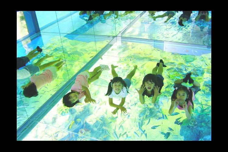 【200円割引】越前松島水族館 クーポン...の写真