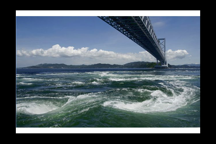 【最大23%割引】徳島県立 渦の道 入館...の写真