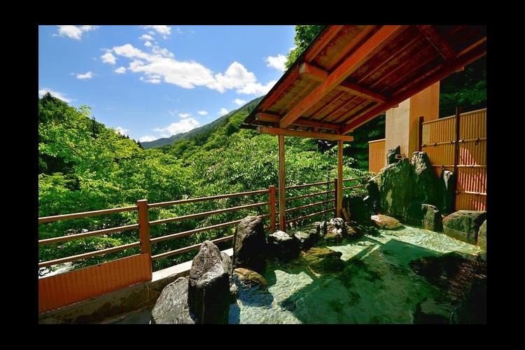 【320円割引】道志川温泉紅椿の湯 クー...の写真