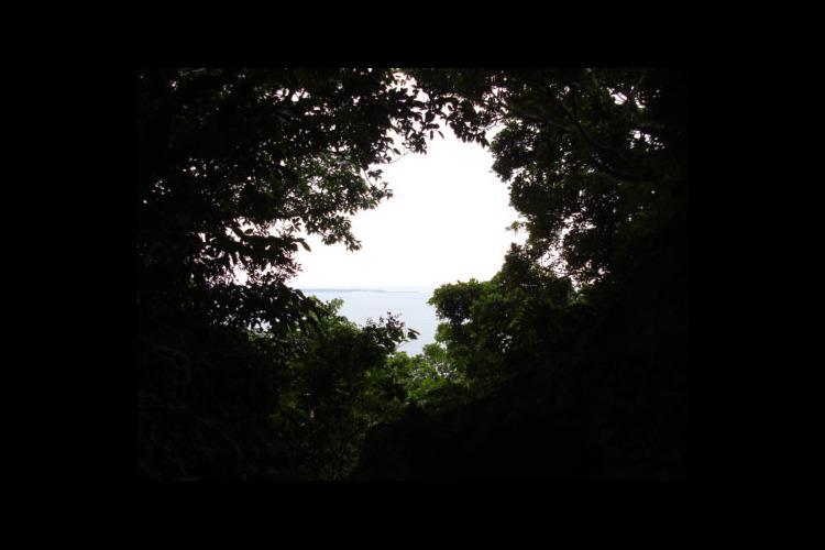 元始の森「ガンガラーの谷」&世界遺産「斎...の写真