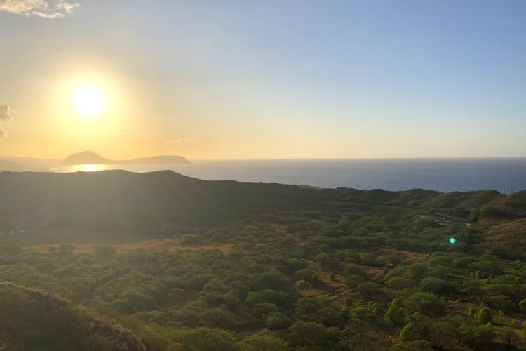 ダイヤモンドヘッド 朝のハイキング  6...の写真