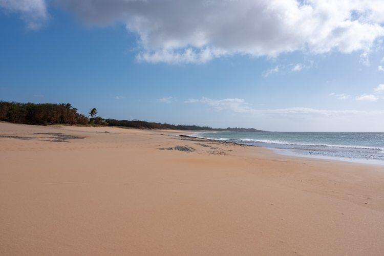 [オアフ島発着] モロカイ島日帰り観光の写真