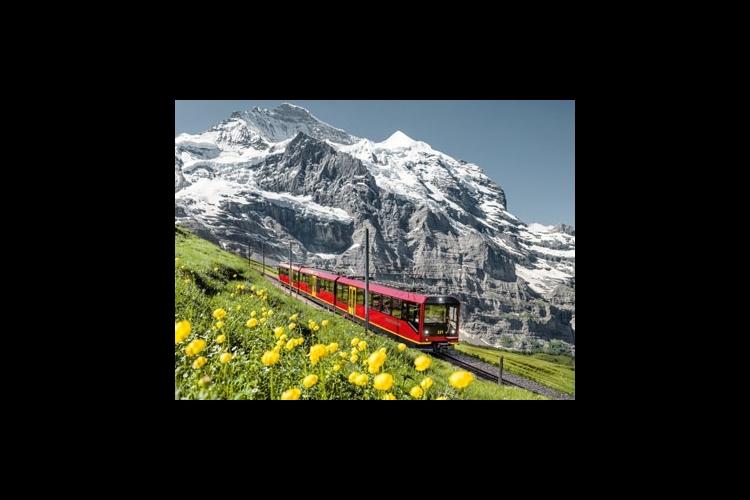 ユングフラウエリアの鉄道が乗り放題 ユン...の写真