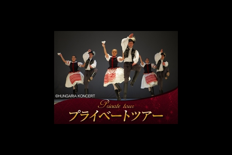 【プライベートツアー】 往復送迎+日本語...の写真