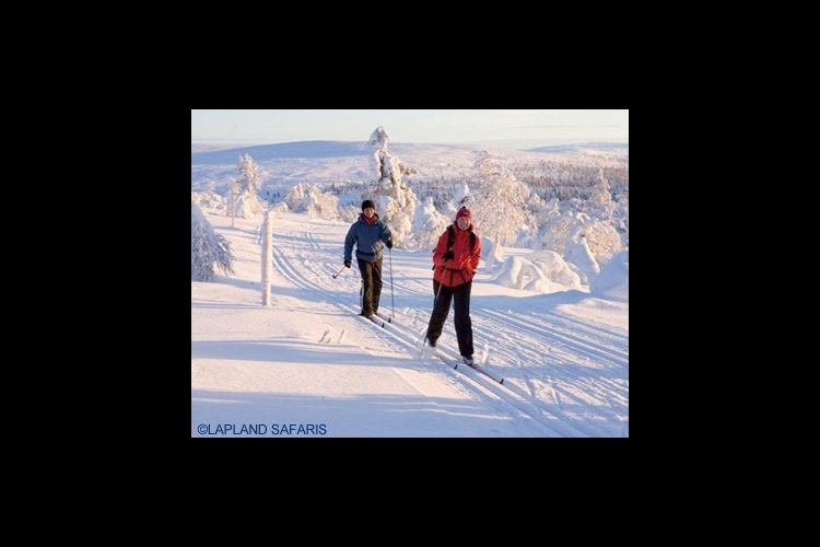 クロスカントリースキー体験の写真