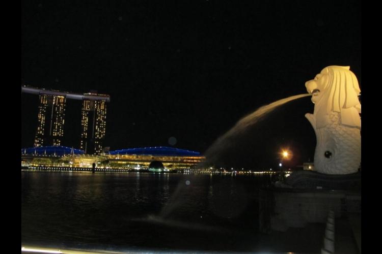 夕方発! シンガポール夜景ツアー・マーラ...の写真