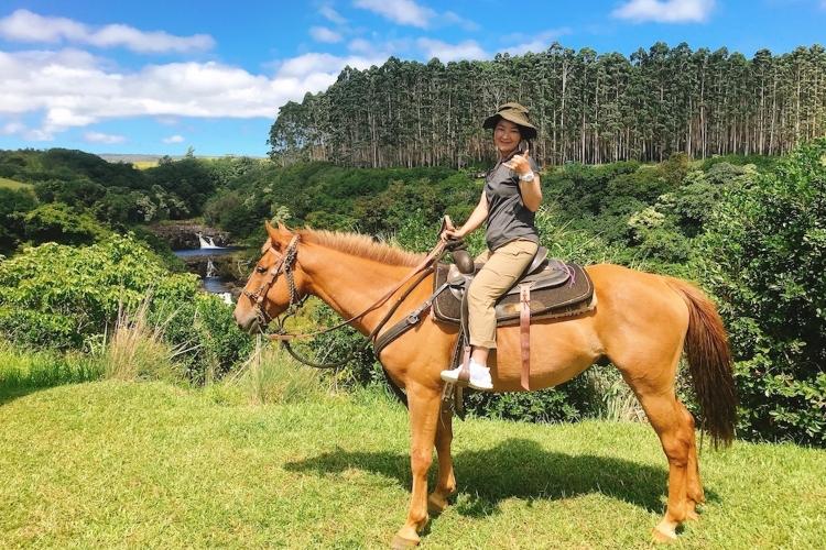 ウマウマ滝乗馬ツアー 滝つぼでSUPやカ...の写真