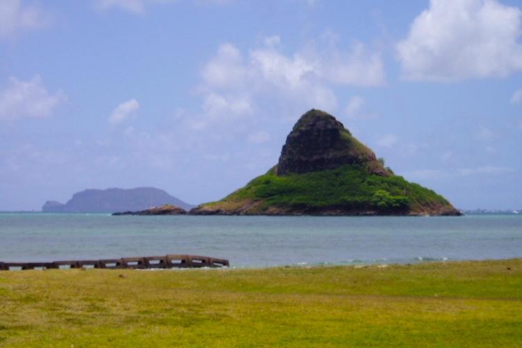 オアフ島1日ぶらり旅♪ ハレイワタウンや...の写真