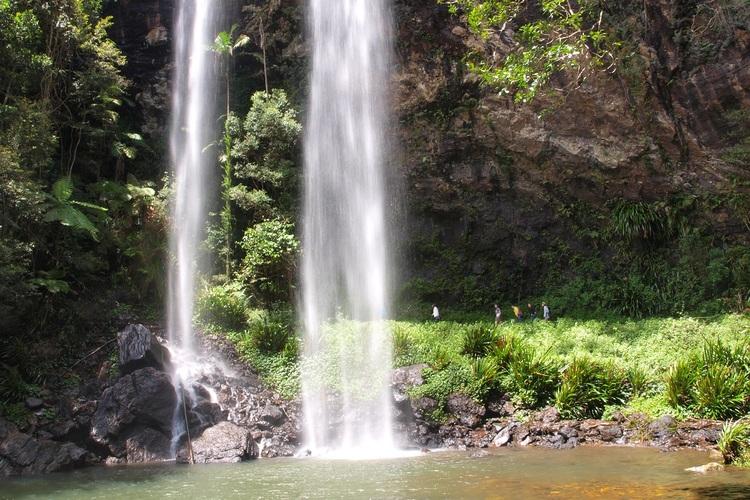 世界自然遺産 スプリングブルックの奇跡の写真