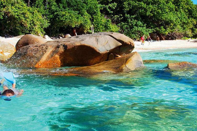 フィッツロイ島 1日滞在 グラスボトムボ...の写真