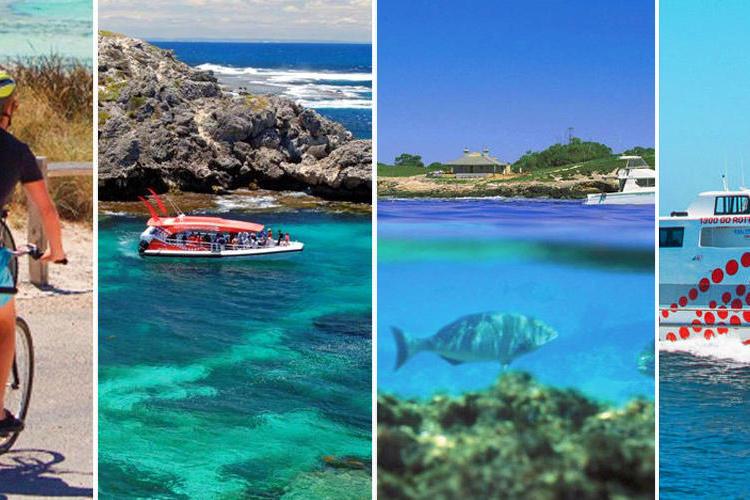 ロットネスト島 往復フェリー&ボートツア...の写真